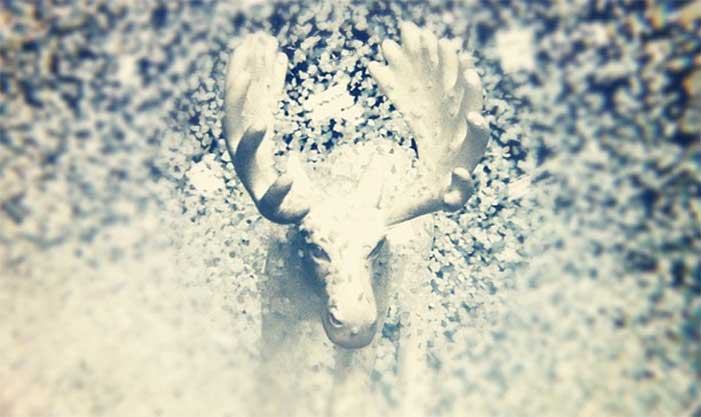 Moose in a snow globe